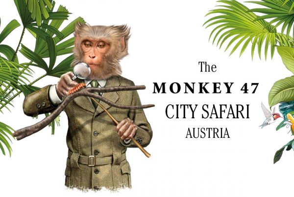 teaser-bild_monkey47