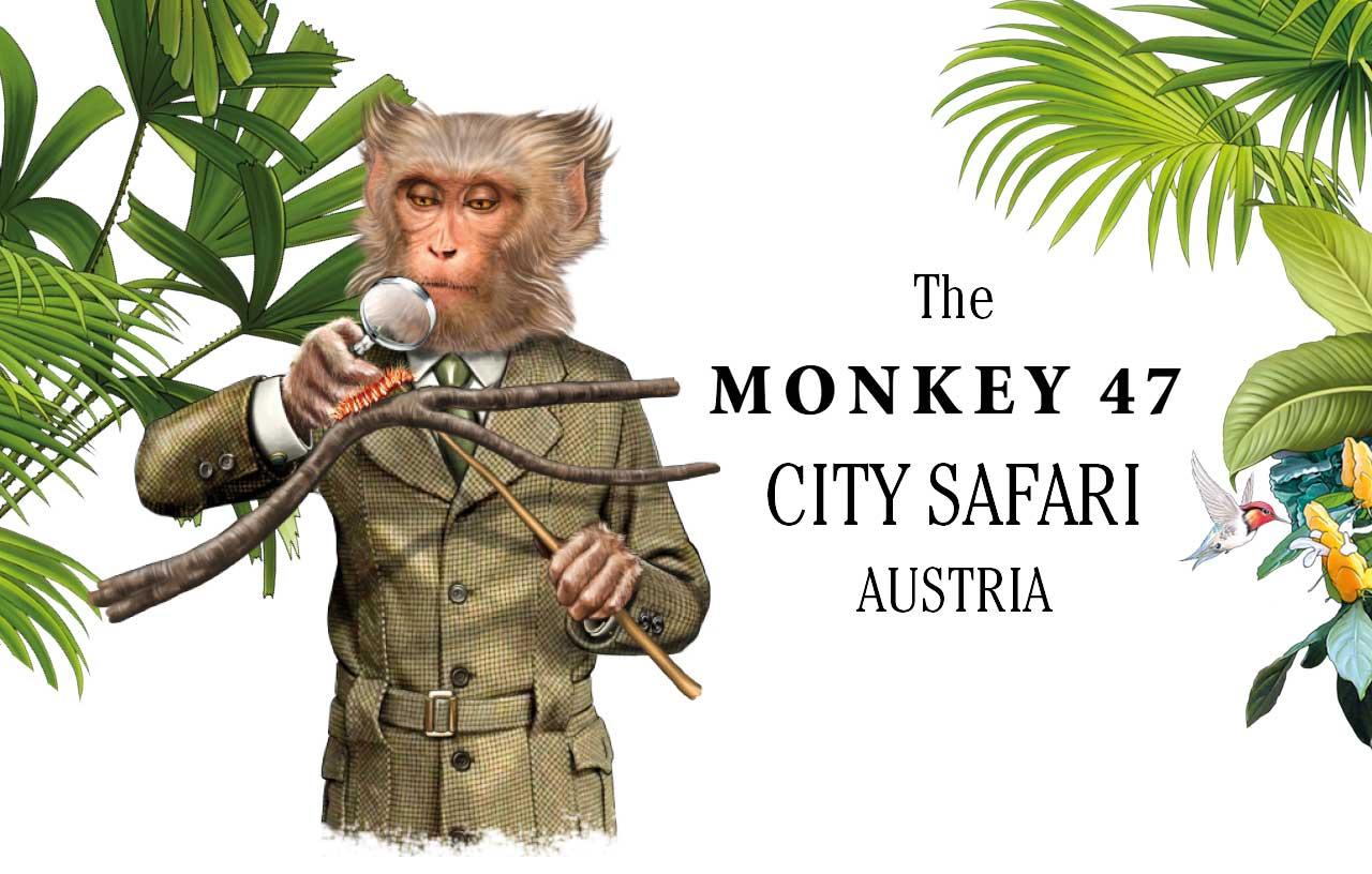Monkey47 City Safari